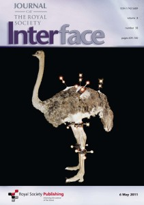 Interface_Cover